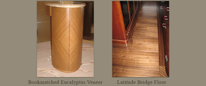 Bookmatched eucalyptus veneer & Latitude bridge floor